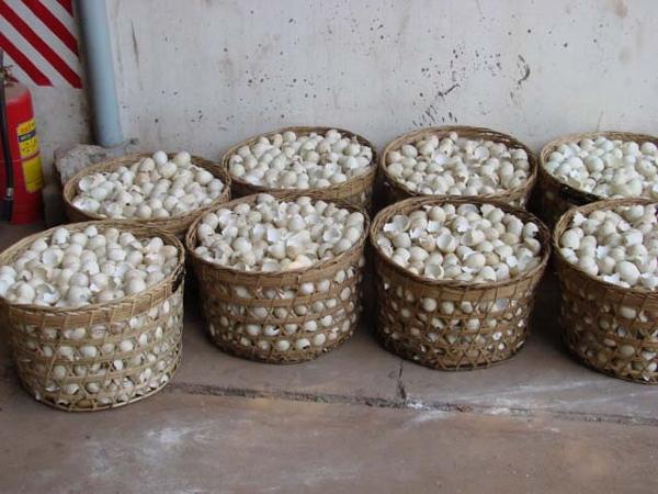 Mingkasa Kabinettschrank - Eggshell